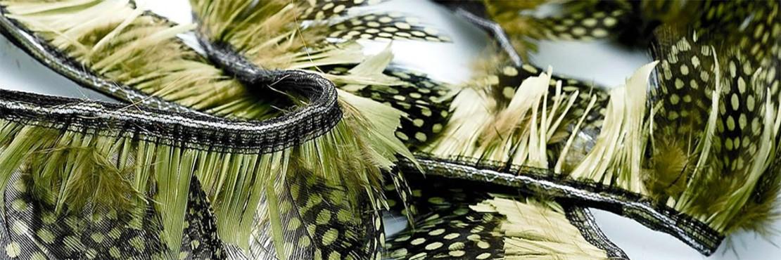 feathers-fringe